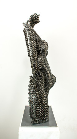 Venus in Chains5
