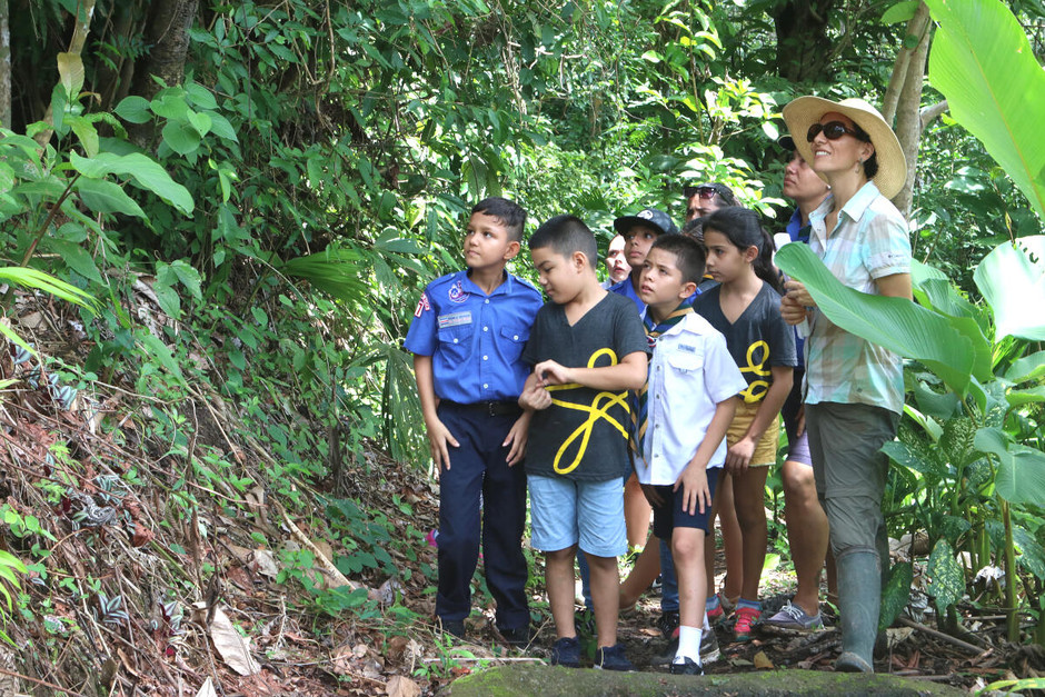 Scouts visit to the reserve at Gaia and the releasing of three Scarlet Macaws