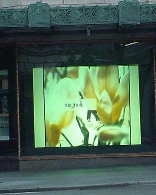 Window2a.jpg