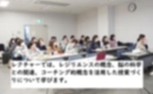 wix-reji-11.jpg