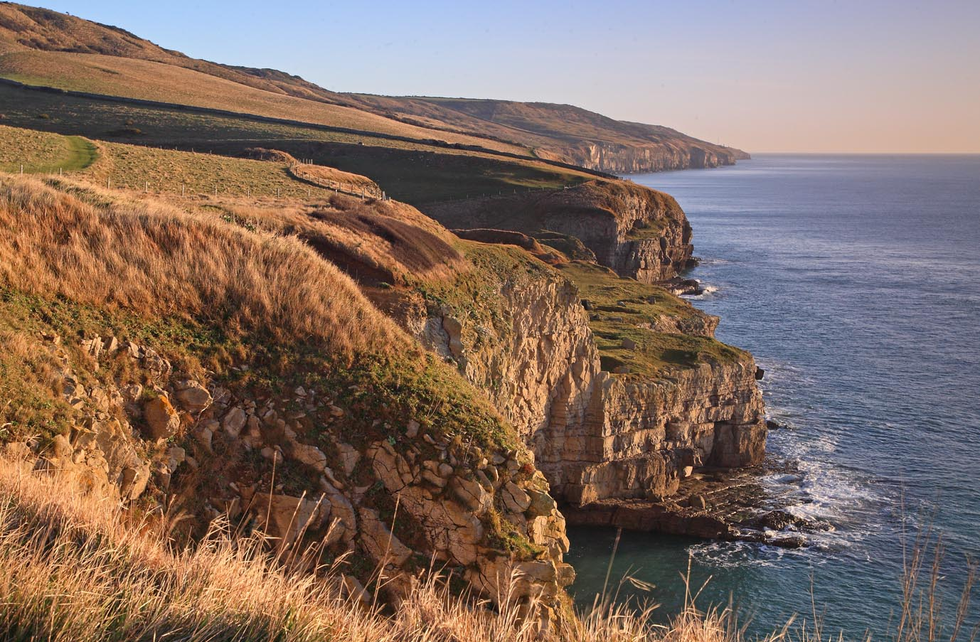 The Purbeck coast