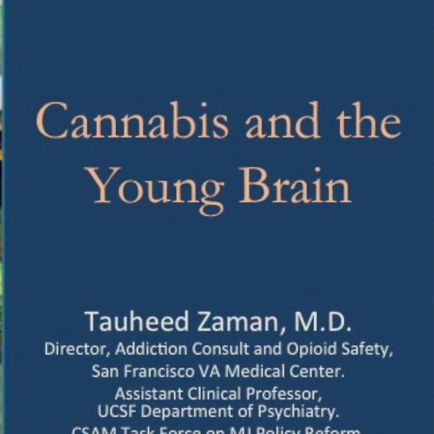 Cannabis and the Young Brain with Dr. Tauheed Zaman, UCSF