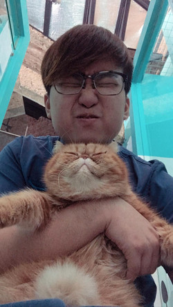 cat vacation 1