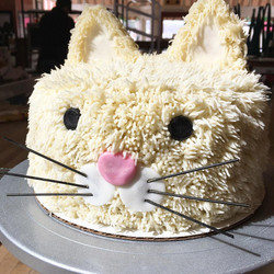 Kitty Cake cake