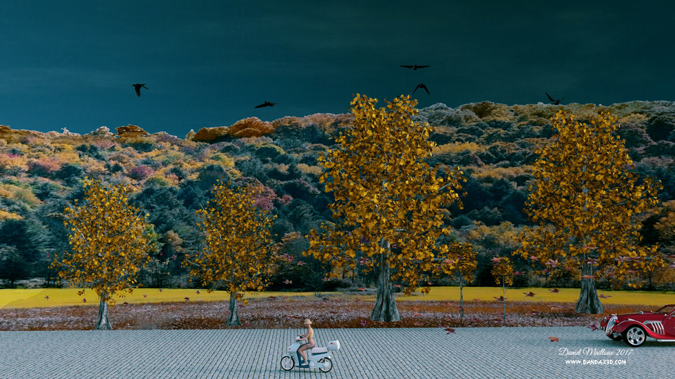 Fall long road