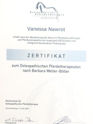 Zertifikat Physiotherapie und Osteoathie