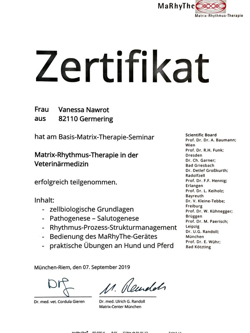 Zertifikat Matrix