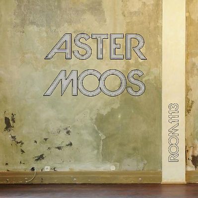 Aster Moos - Room 1113 - Cover (CD Baby