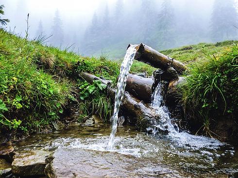 Carpathians, source of spring fresh wate