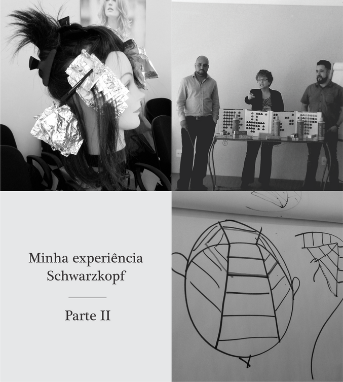 Minha experiência Schwarzkopf - Parte II