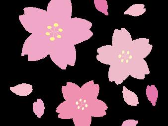 お花見スポットat世田谷区