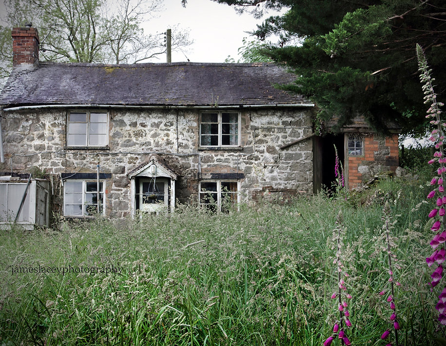 Spider Cottage, Urbex, Abandoned, Derelict