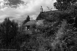 Cobweb Cottage