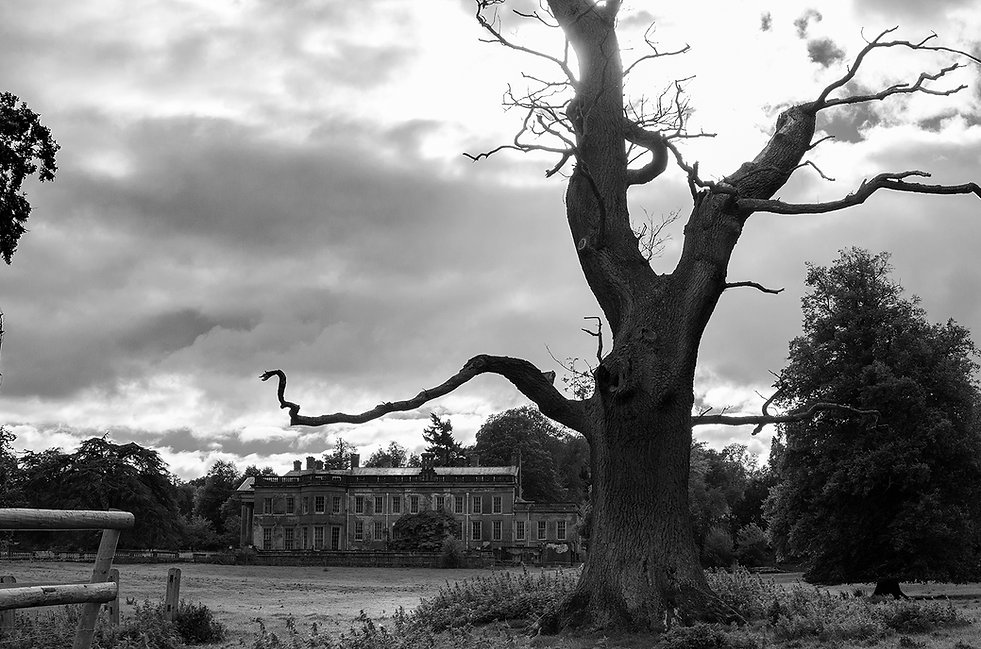 Brogynton Hall, Urbex, Abandoned