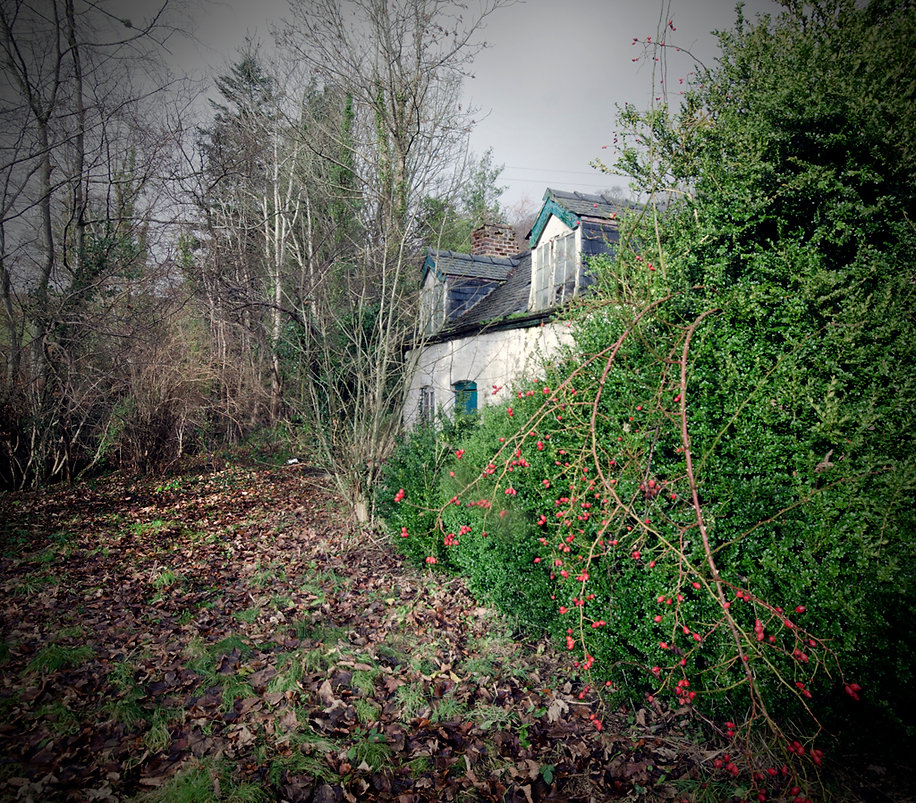 Red berry Cottage, Urbex, Abandoned, Derelict