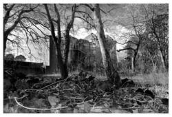 Whittingham Lunatic Asylum III