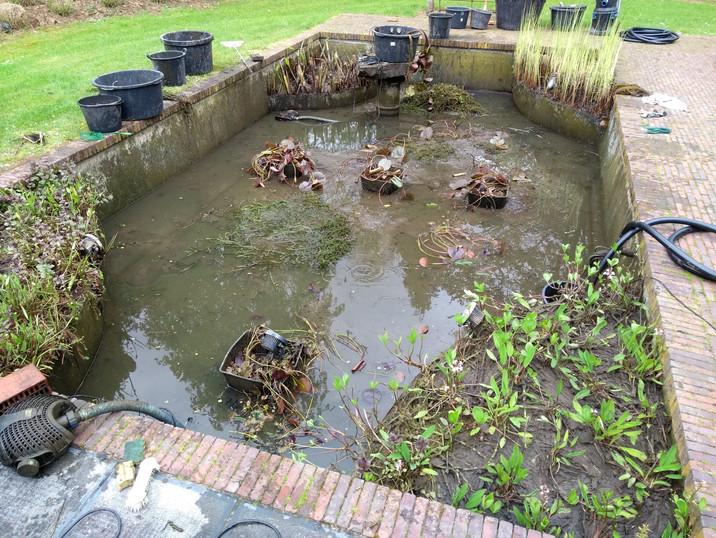 nettoyage bassin aquatique
