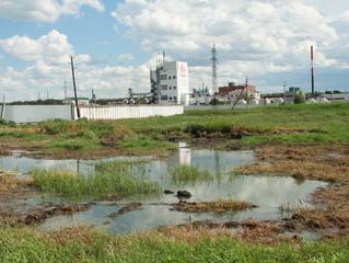 «Оплот» поможет садоводству, расположенному около завода «ОША», найти виновных в экологическом бедст
