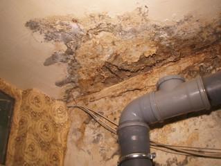 Квартиру омички с двумя детьми затапливает через дырявую крышу