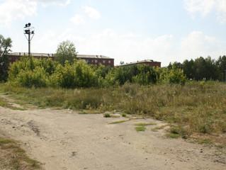 В омском саду «Сибирь» хотят построить спорткомплекс с бассейном