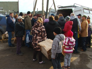 Жителям Советского округа бесплатно раздали 2000 цыплят