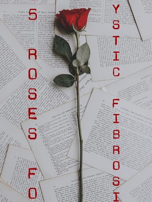 65 rose.JPG