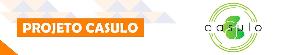 banner_páginas_CASULO.png