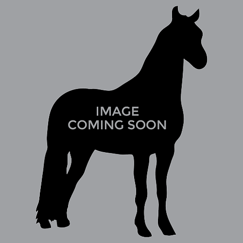 horse-coming-soon.png