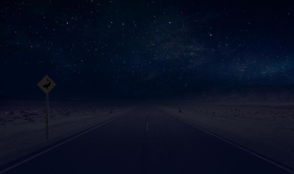 desert-neon-night.jpg