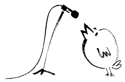 Visuel stage de Jazz débutant