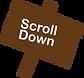 scrolldownsignicon brown.png