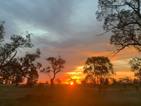 A Trip to Narrabri - Lessons Learnt & Future Hopes