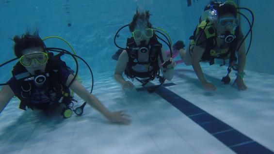 Try Dive.jpg
