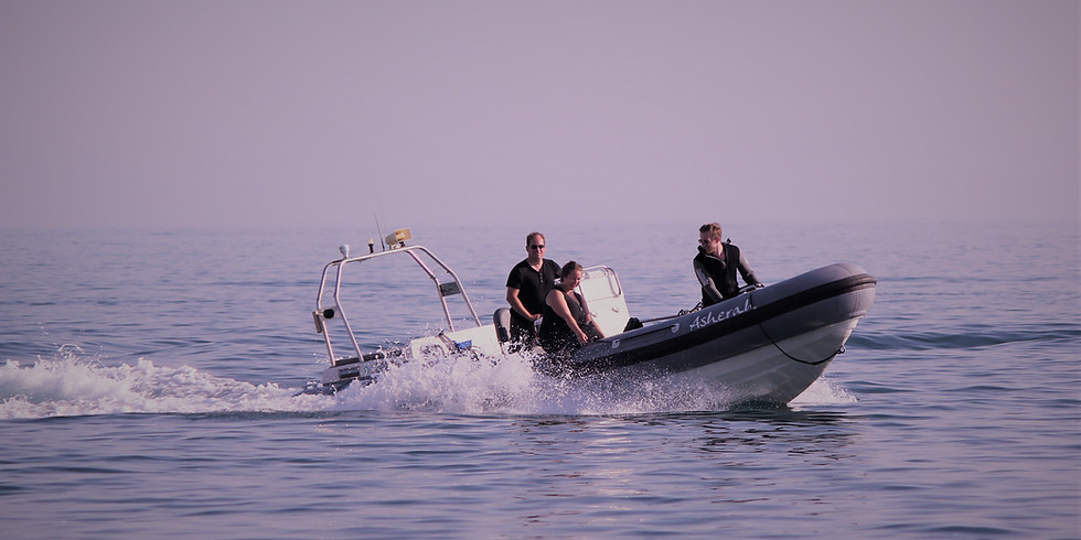 RIB Dive - Swanage Coast (1)