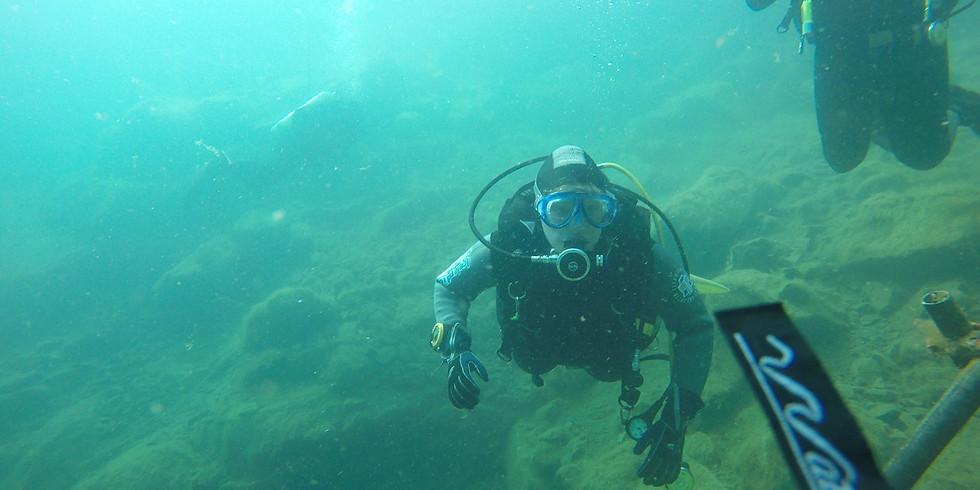 Shore Dive - Sea Dive 28th June