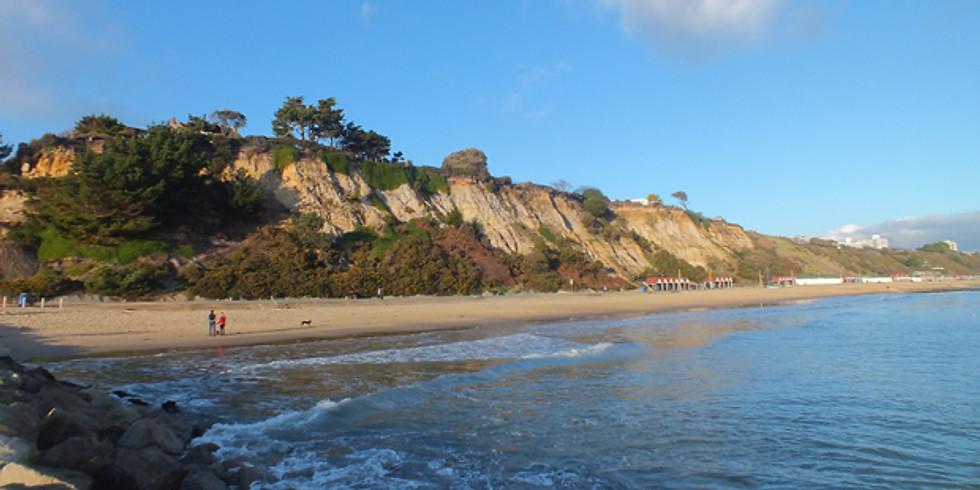 Morning Beach Shore Dive