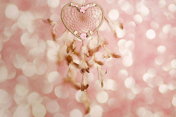 Pink Fairy Dream Catcher