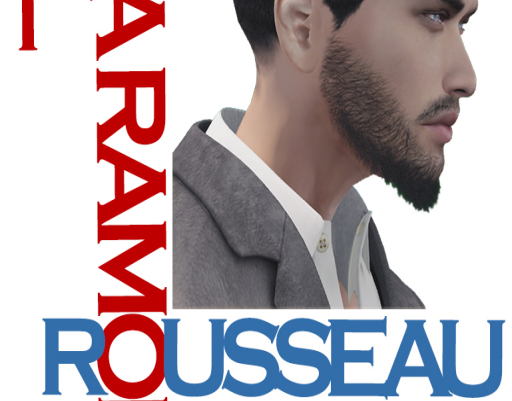 Interview with Mayoral Candidate Dimitri Rousseau