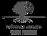 logo_YvesPerrin_gris.png