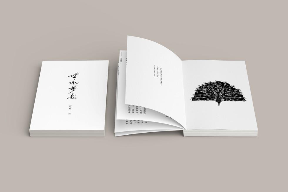 Wildkiddo Mini Novel Cover Design & Illustration