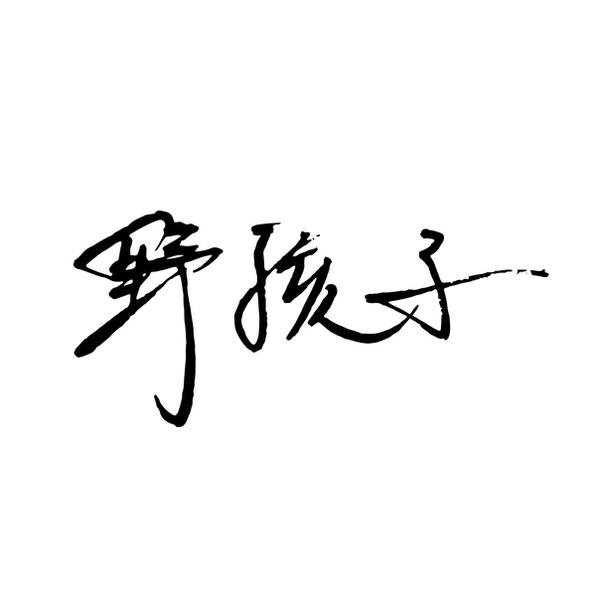 Wildkiddo Logo and Brand identity