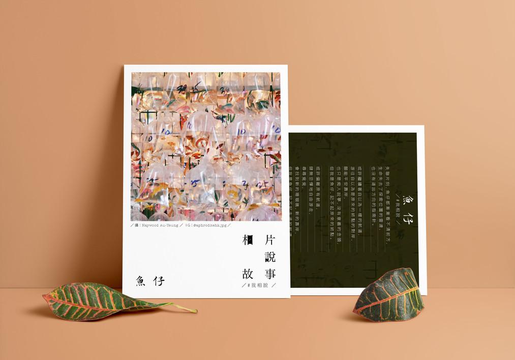 Aphrodite Postcard Design