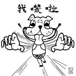 springbagdog-2nd-01.png