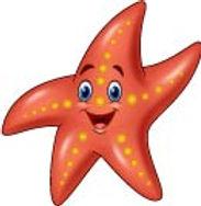 Starfish Image [Converted].jpg