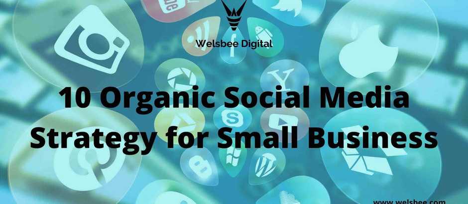 10 Organic Social Media Strategy for Small Business