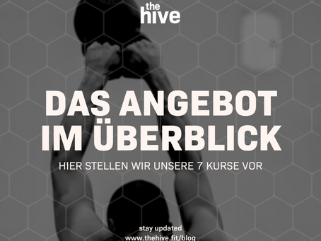 Die 7 Kursprogramme von the hive im Überblick