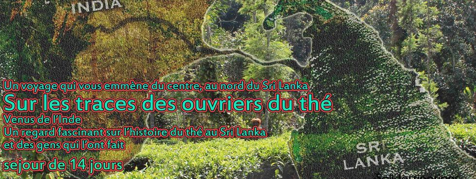 2014._Sur_les_traces_des_ouvriers_du_thé