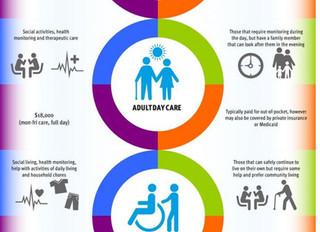 Senior Care Options