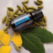 ZenGest Digestive Blend Essential Oil
