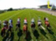 horse mini.jpg